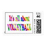 Todo sobre voleibol