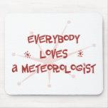 Todos ama a un meteorólogo tapetes de raton