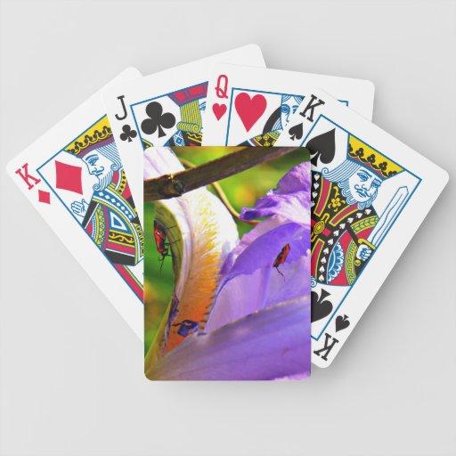Todos en los detalles - iris e insectos baraja de cartas