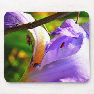 Todos en los detalles - iris e insectos tapete de ratón