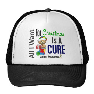 Todos lo que quiero para el autismo del navidad gorras de camionero
