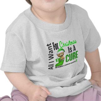 Todos lo que quiero para el linfoma Non-Hodgkin de Camisetas