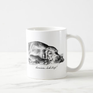Todos mis sueños tazas de café