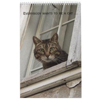 Todos quiere ser un calendario del gato