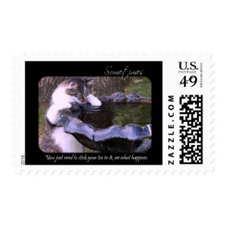 Toe In (Cat) Stamps