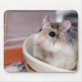 Tofu the hamster mouse pad