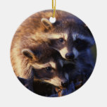 Together Forever Raccoons Ornament