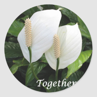 """Together"" - stunning pair of Spathiphyllum! Classic Round Sticker"