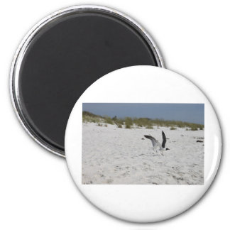 Together we can Succeed Love and Ocean   Salt 2 Inch Round Magnet
