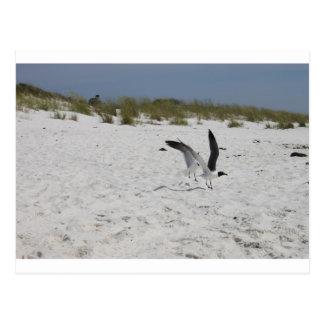 Together we can Succeed Love and Ocean   Salt Postcard