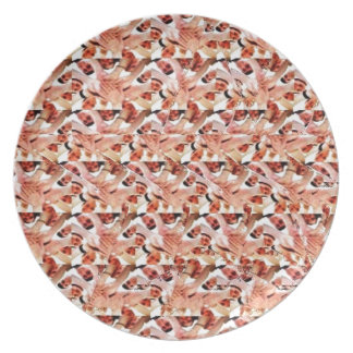 Togetherness stereogram dinner plate