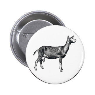 Toggenburg Goat full body Button