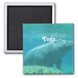 Togo Hippo Fridge Magnets
