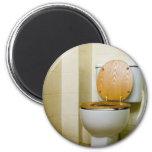 Toilet bowl in hotel bathroom 2 inch round magnet