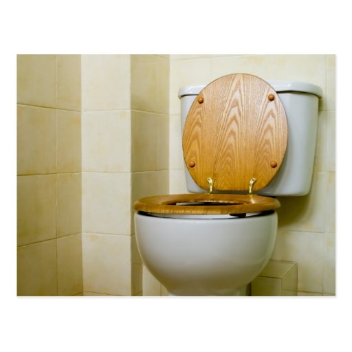 Toilet bowl in hotel bathroom postcard