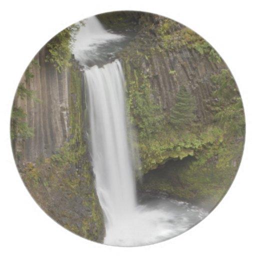Toketee baja en el condado de Douglas, Oregon Plato De Comida