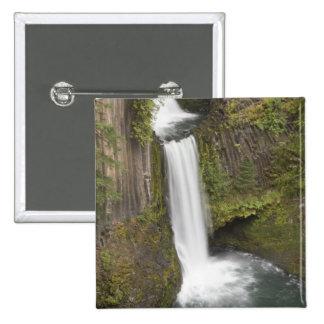 Toketee Falls in Douglas county, Oregon Button