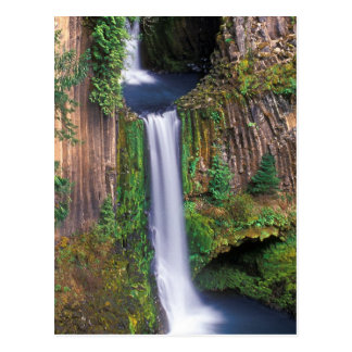 Toketee Falls Postcard