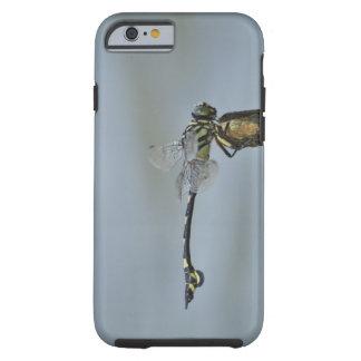 Tokyo Prefecture Honshu Japan 2 iPhone 6 Case