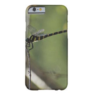 Tokyo Prefecture Honshu Japan iPhone 6 Case