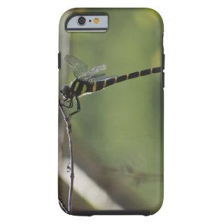 Tokyo Prefecture, Honshu, Japan Tough iPhone 6 Case