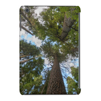Toldo de árbol de abeto de douglas fundas de iPad mini