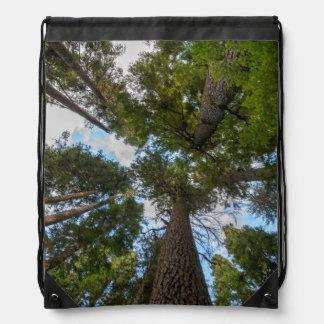 Toldo de árbol de abeto de douglas mochilas