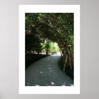 Toldo de bambú de la arboleda póster
