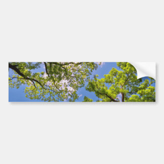 Toldo de la primavera etiqueta de parachoque