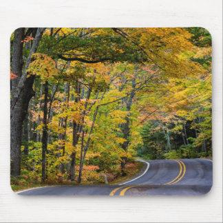 Toldo del otoño del color a lo largo de la mouse pad