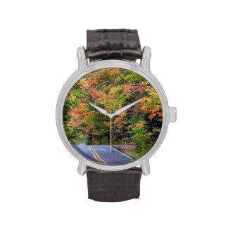 Toldo del otoño del color a lo largo de la relojes de mano