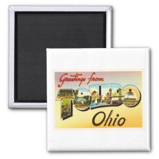 Toledo Ohio OH Old Vintage Travel Souvenir Magnet