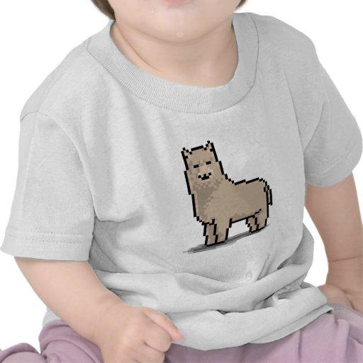 Tolerancia de la alpaca camiseta