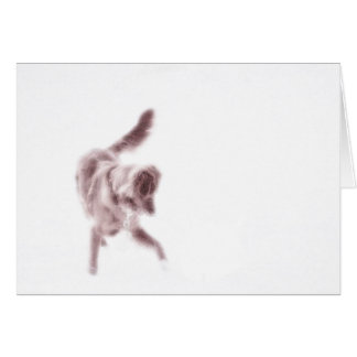 Toller Dance Greeting Cards