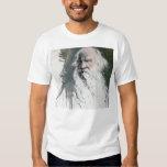 Tolstoi Shirt