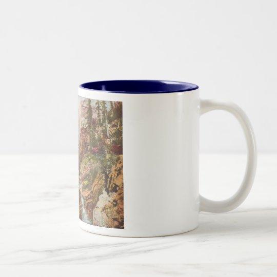 Toltec Gorge Two-Tone Coffee Mug