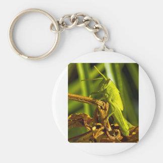 Tolva verde llavero redondo tipo pin