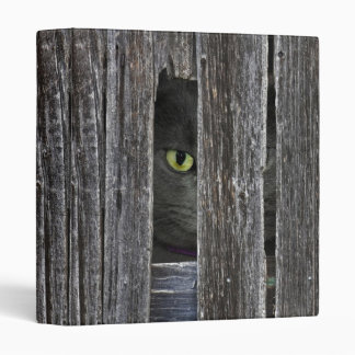 Tom Cat 3 Ring Binder