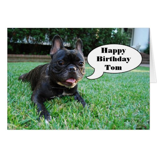 Tom Happy Birthday French Bulldog Card