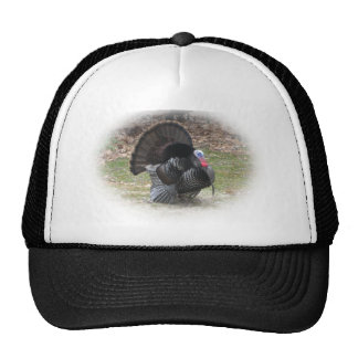 Tom Turkey Hat