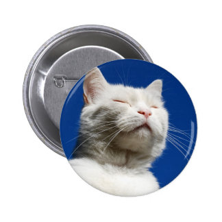 Tom white cat pinback button