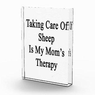 Tomar el cuidado de ovejas es la terapia de mi