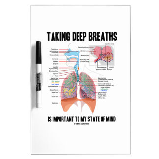 Tomar las respiraciones profundas es importante pizarra blanca