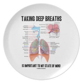 Tomar las respiraciones profundas es importante plato