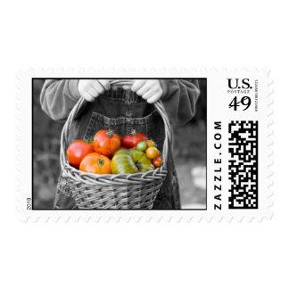 Tomate en cesta sello postal
