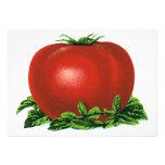 Tomate maduro rojo del vintage, legumbres de fruta invitación