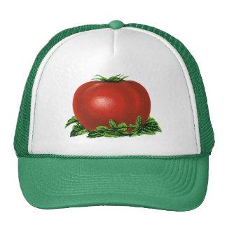 Tomate maduro rojo del vintage, legumbres de gorro de camionero