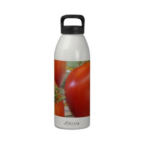 Tomates Botella De Agua