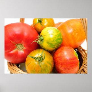 Tomates coloridos de la herencia póster