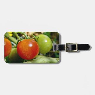 Tomates de cereza maduros etiquetas bolsa